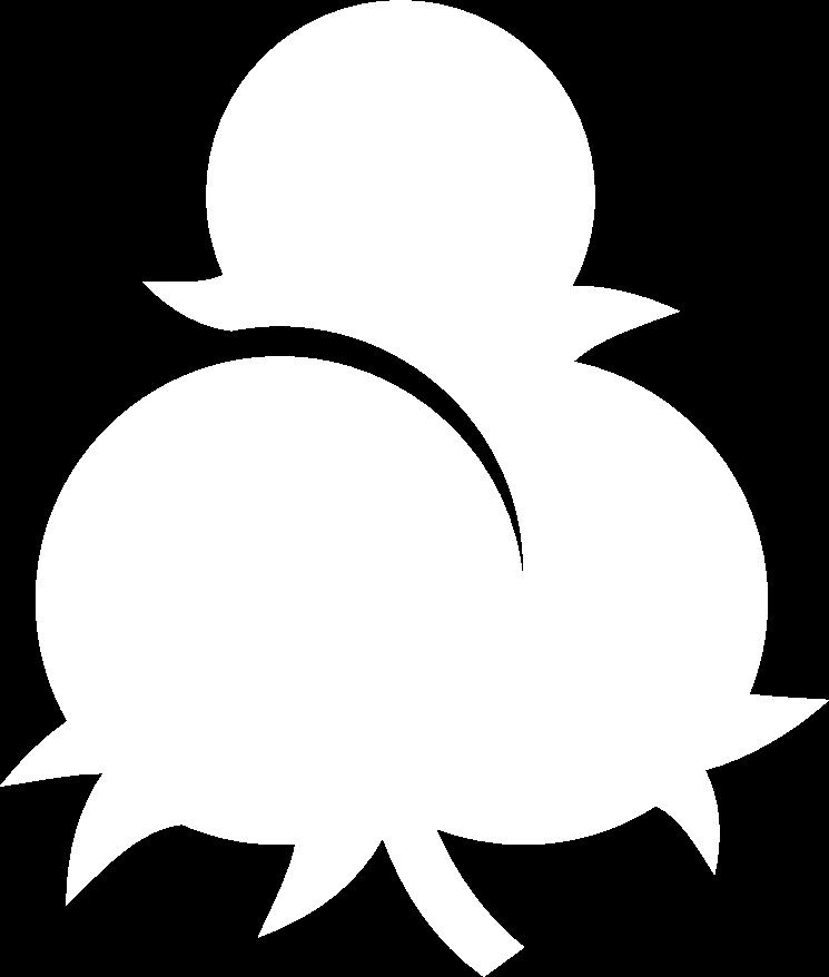 Kleine Kospe Logo weiss